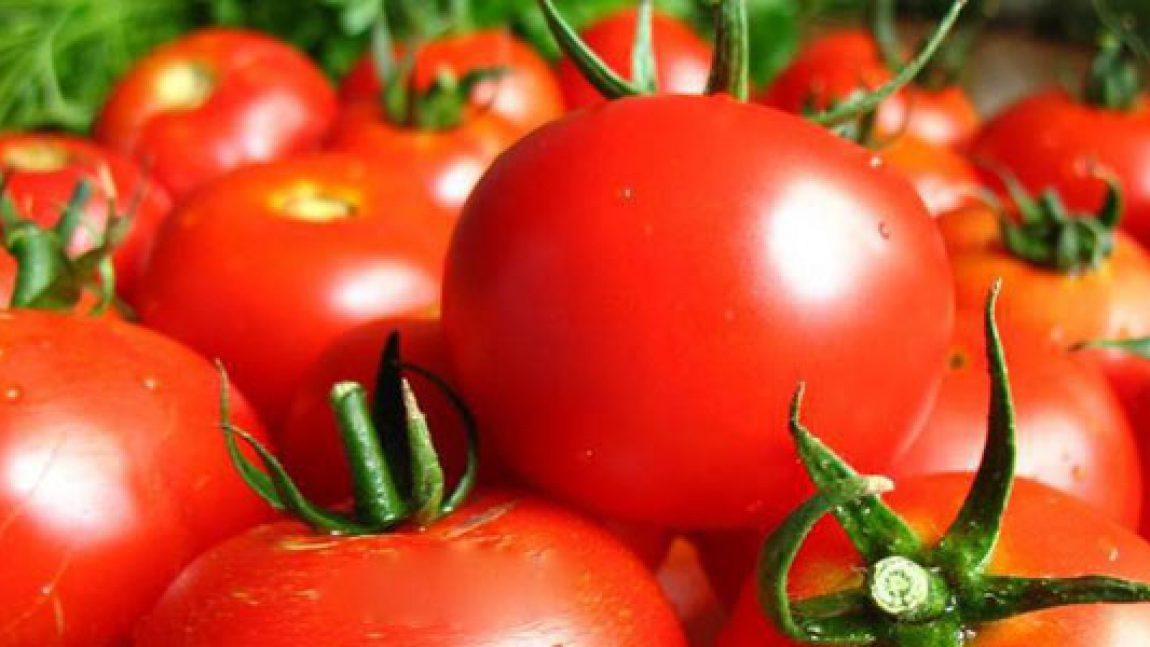 Что полезней для ребёнка каша или помидор?