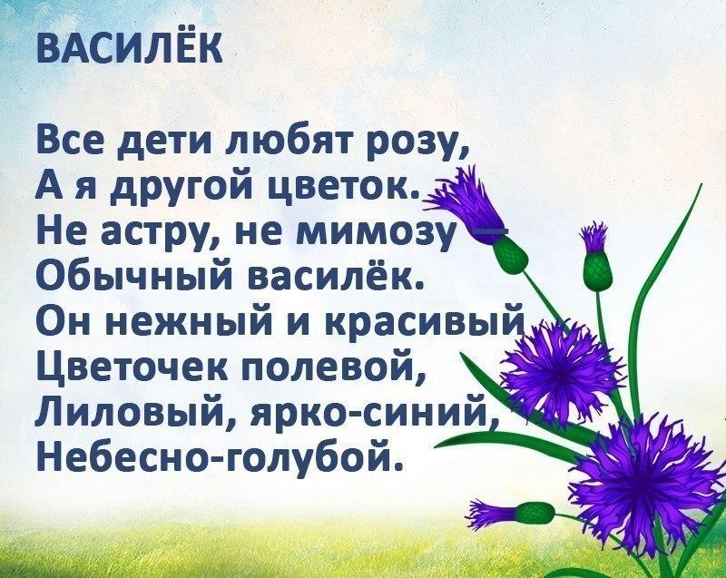 стихи картинками цветы алкоголь, еду