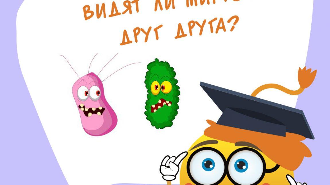 Видят ли микробы друг друга?